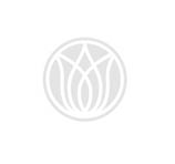 Luxury Designer Italian Bed With Headboard